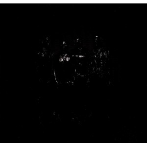 Weezer Black Album (Vinilo)